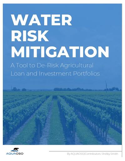 Mitigation White Paper Cover Page with Border