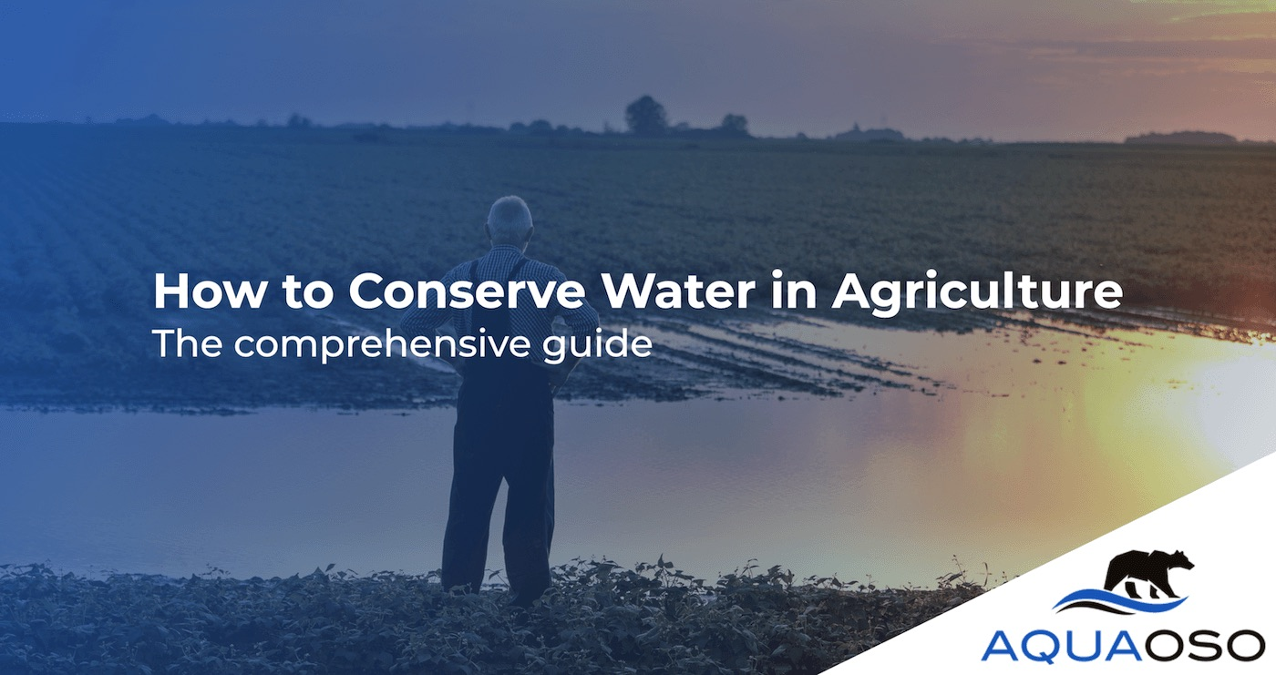 How-To-Conserve-Water-in-Agriculture-The-Comprehensive-Guide
